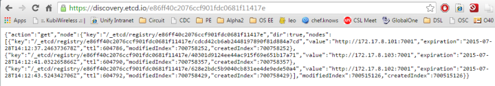 etcd discovery output